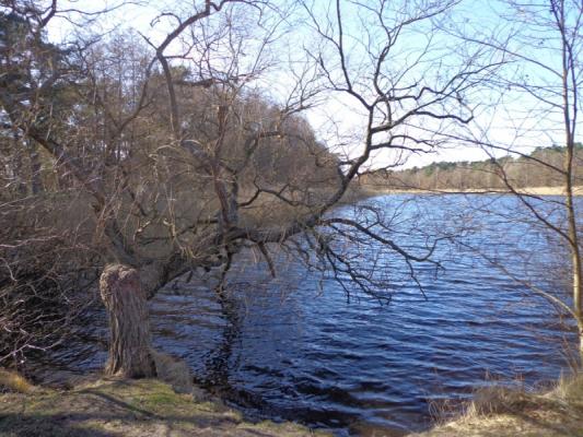 prerow-strom (1)