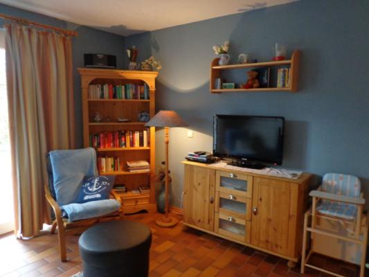 wohnzimmer-mit-bibliothek