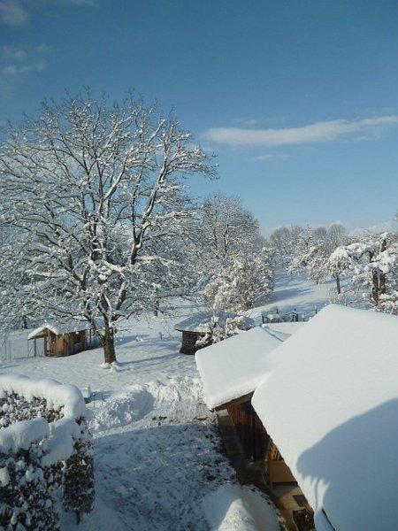 csm_Blick-in-Hof-mit-Nusssbaum-Winter_bf2a280402