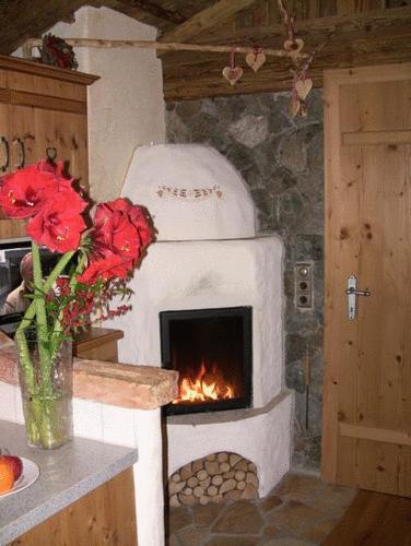 Chalet an der Piste Salzburger Land Blumen