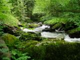 travellingingermany_chalet_bayern_baerenloch_wanderweg_osterbach