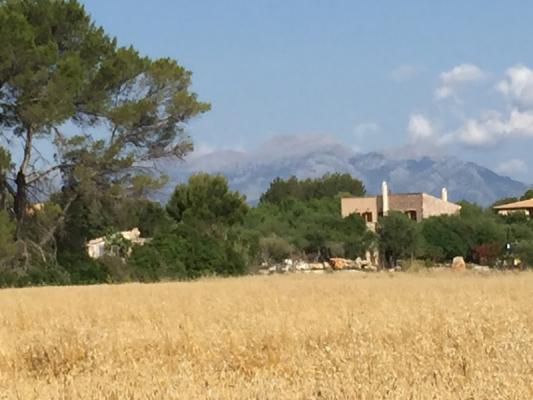 Romantische Naturstein Finca auf Mallorca Weitsicht