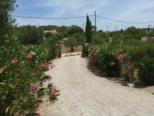 Romantische Naturstein Finca auf Mallorca Weg