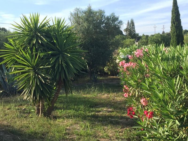 Romantische Naturstein Finca auf Mallorca Blumengarten