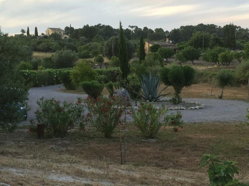 Romantische Naturstein Finca auf Mallorca Bäume dunkel