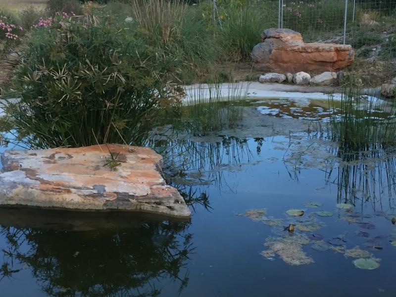 Romantische Naturstein Finca auf Mallorca Poolblick Abend