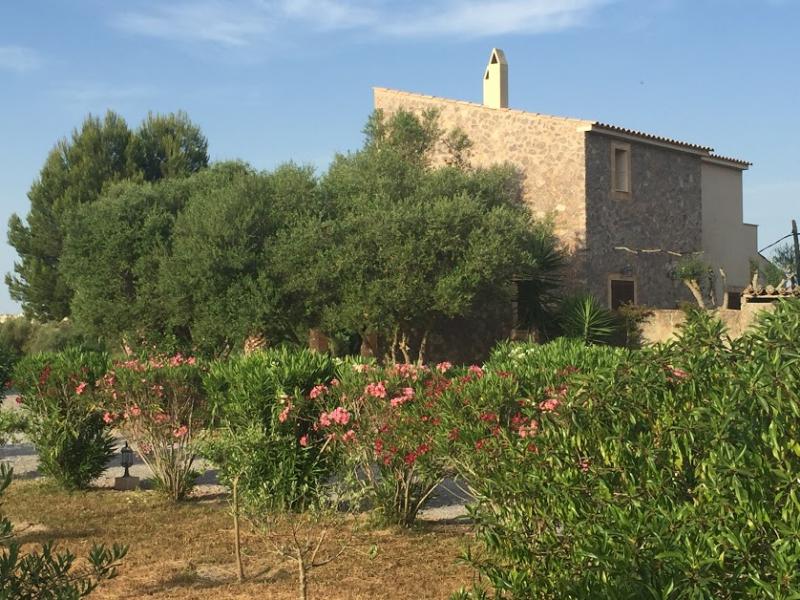 Romantische Naturstein Finca auf Mallorca Haus Fernansicht mit Bäumen