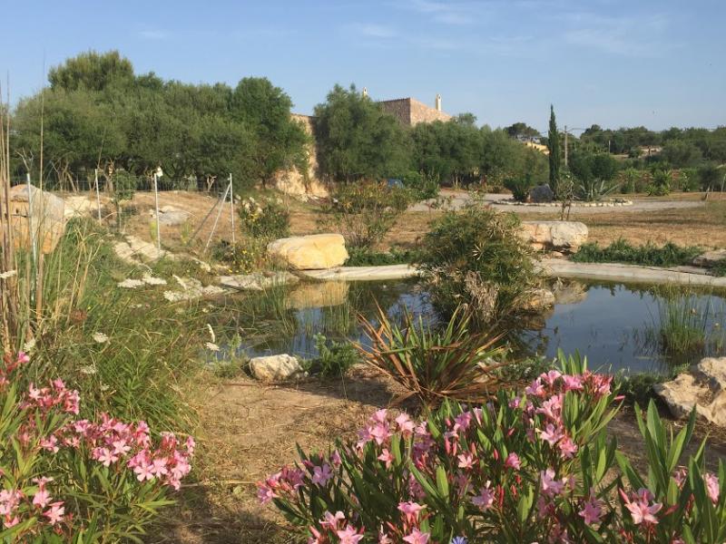 Romantische Naturstein Finca auf Mallorca Naturteich