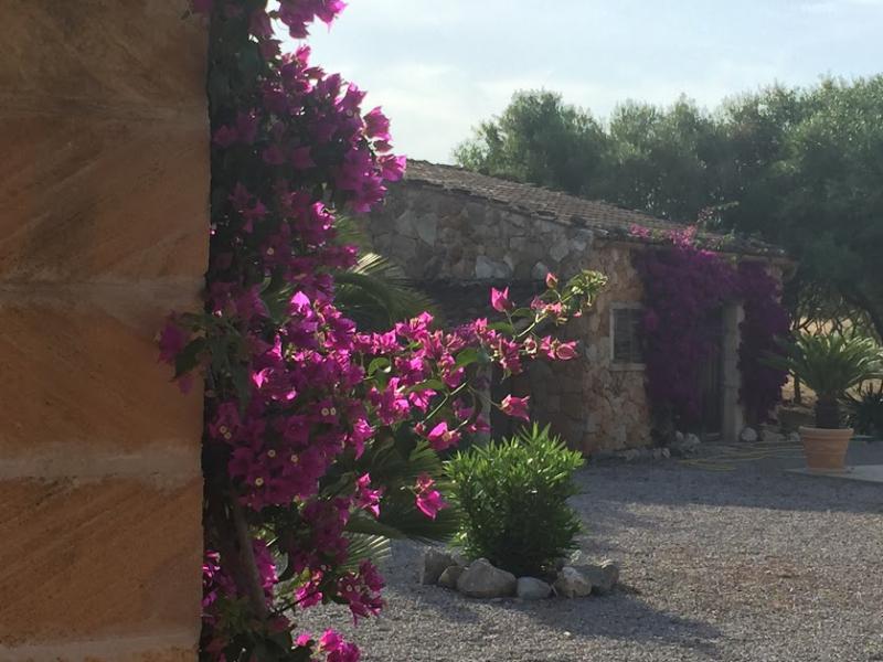 Romantische Naturstein Finca auf Mallorca Bougainville seitlich