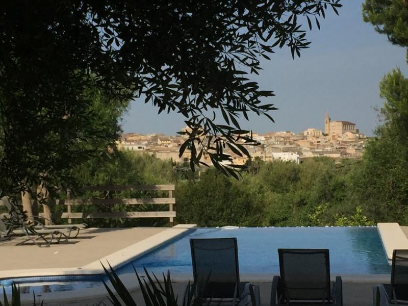 Romantische Naturstein Finca auf Mallorca Baumzweig