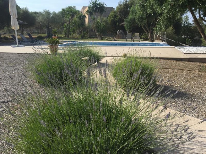 Romantische Naturstein Finca auf Mallorca Gräser