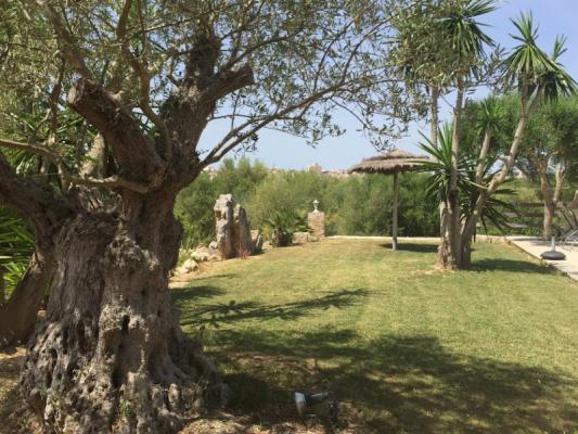 Romantische Naturstein Finca auf Mallorca Garten in der Sonne