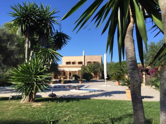 Romantische Naturstein Finca auf Mallorca Blick auf`s Haus mit Palme