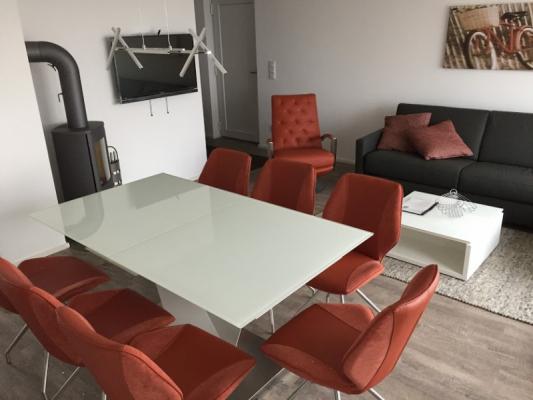 Olpenitz Ferienhaus Tisch mit Stühlen