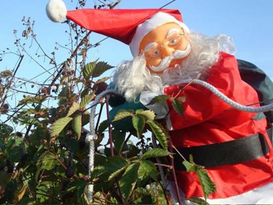 familienurlaub-bauernhof-Weihnachten