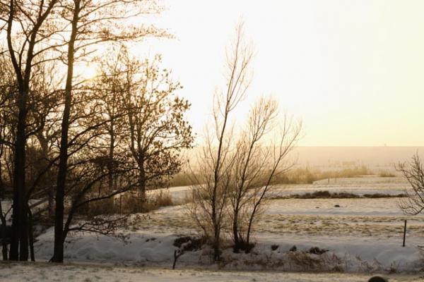familienurlaub-bauernhof-Winterimpression