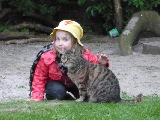 familienurlaub-bauernhof-Katze
