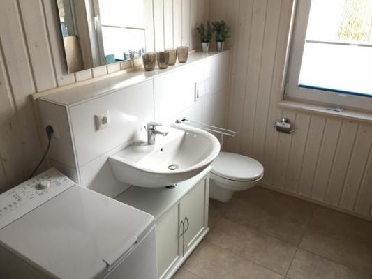 Ferienhaus Olpenitz mit 2 Zimmern Waschbecken